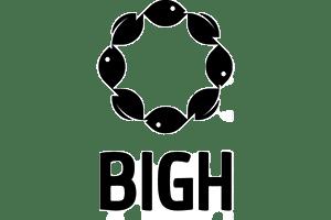 logo_BIGH_small